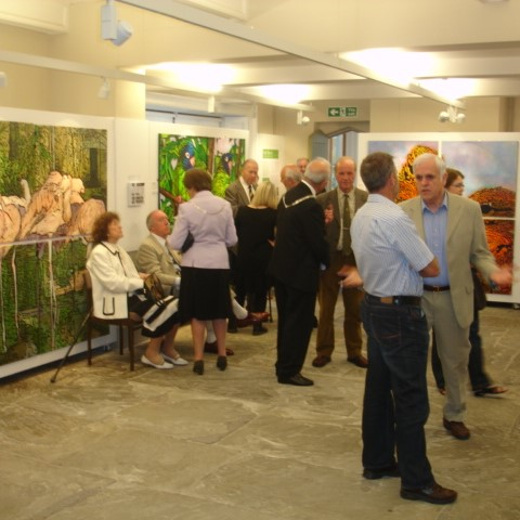 Stewards Gallery, Clitheroe, Lancashire UK, Gallery